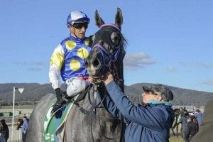 Go One More wins at Goulburn