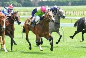 Opunake Cup runner Longchamp
