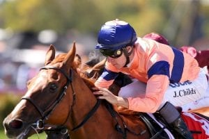 Stewards order scratching of Show A Star