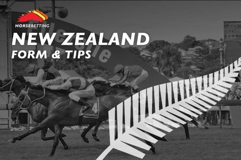Horse Betting Odds & Tips