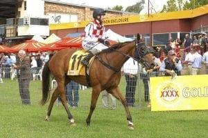Prada Miss wins at Armidale