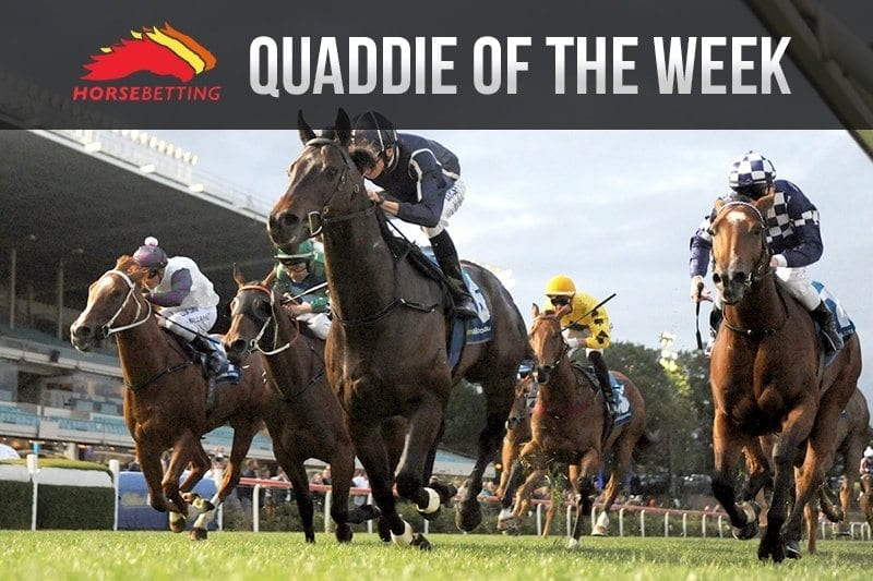quaddie of the week