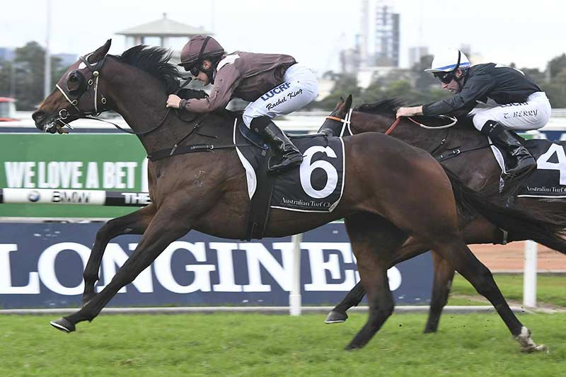 Supply And Demand wins at Rosehill