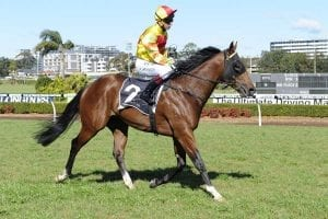 Ryan stable lands early Rosehill double