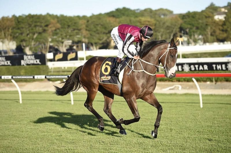 easy odds horse racing betting sites