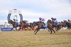 Tamworth racing
