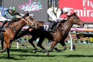 Aloisia wins at Flemington