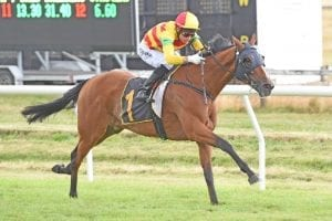 Date with Written Tycoon looms for retired Charmont