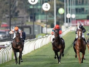 Hey Doc resumes with win in Aurie's Star