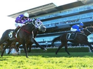 Winx claims Warwick Stakes in a thriller
