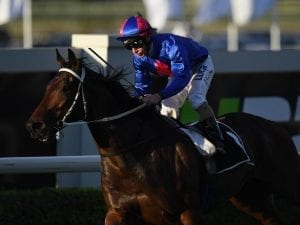 Chocante to make Sydney debut against Winx