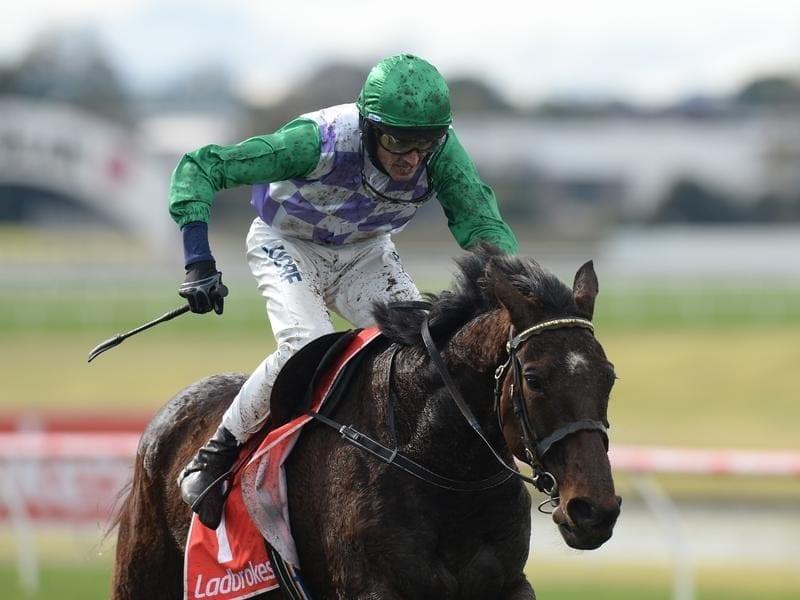 Jockey Richard Cully riding Wells
