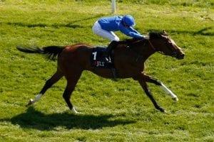 Barney Roy wins at Greenham