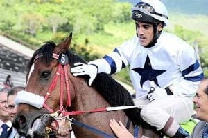 South African jockey Brandon Morgenrood