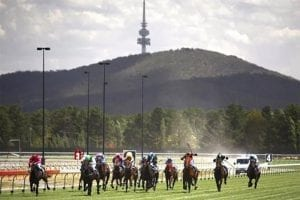 Horse racing in Canberra