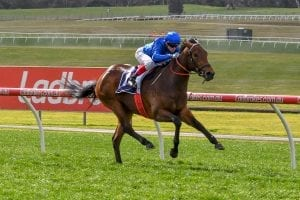 Esperance wins at Sandown
