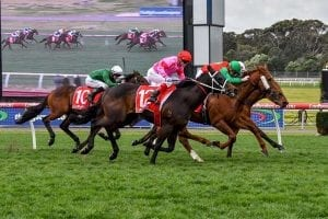 Aberro wins at Sandown