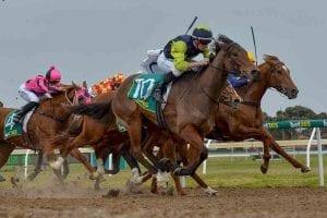 Hard Faith wins at Geelong
