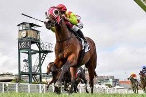 Kobayashi racehorse