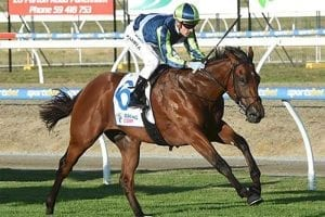 Merchant Navy, trained by Ciaron Maher