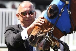 Trainer Robert Heathcote with Buffering