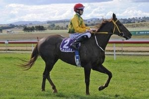 Sarona Downs at Goulburn