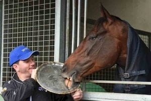 Winx with her Cox Plate