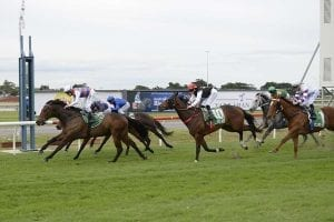 Another Queensland win for Waugh