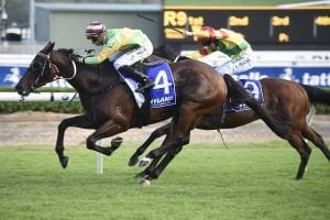 Classic Uniform claims Hill Stakes