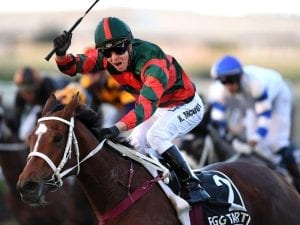 Vets continue to monitor Epsom Hcp fancy