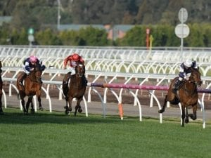 Almandin wows Oliver in Flemington victory