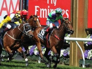 Nichols' Star on song for Let's Elope