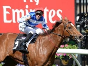 Redkirk Warrior presses claims for Everest