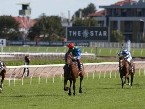 NZ mares have first look of Moonee Valley