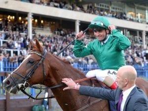 Decorated Knight in upset Irish win