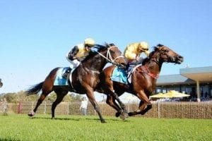 Impregnable overcomes poor start to win