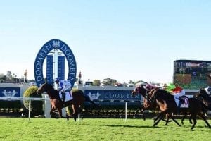 Havasay makes it four straight wins