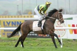 New Zealand galloper Sofia Rosa