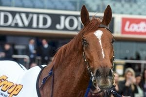 Watchmespin races to Caulfield victory