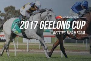 Geelong Cup tips