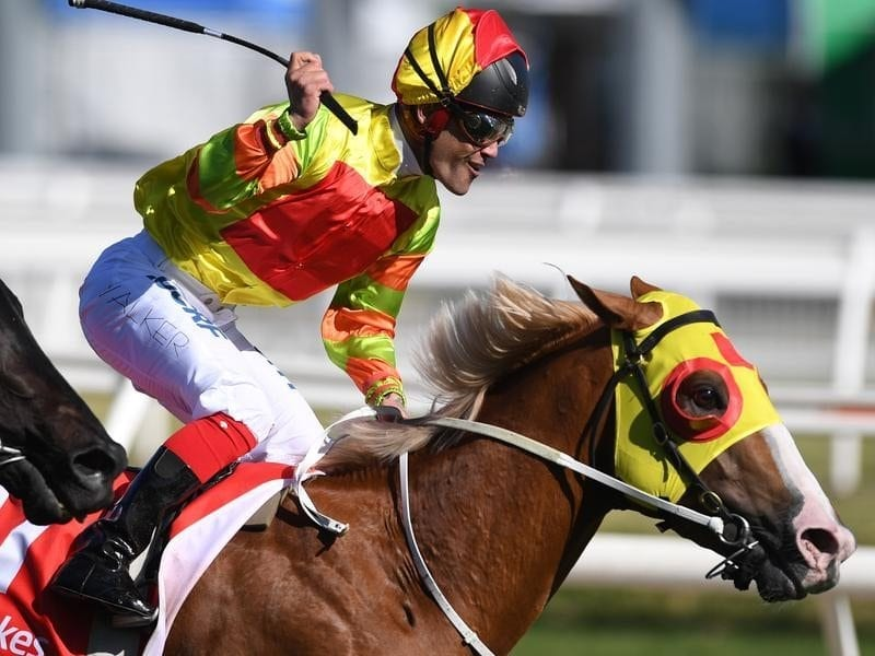 Michael Walker reacts after riding Mighty Boss to victory