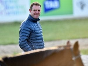 Francis Of Assisi fit for Caulfield Cup