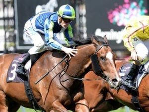 Keen Array wins Group Two Gilgai Stakes
