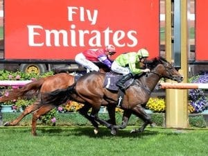 Winkers for Royal Symphony in G1 Guineas