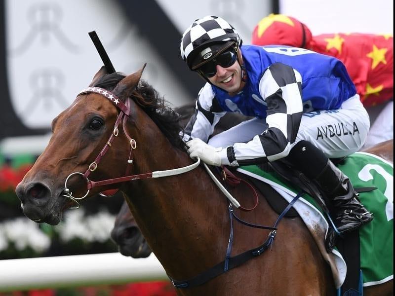 Big Duke ridden by Brenton Avdulla wins the St Leger Stakes