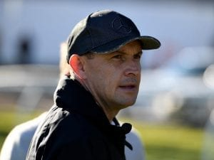 Waller expects improvement from Tangled