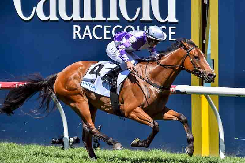 Cool Passion wins at Caulfield