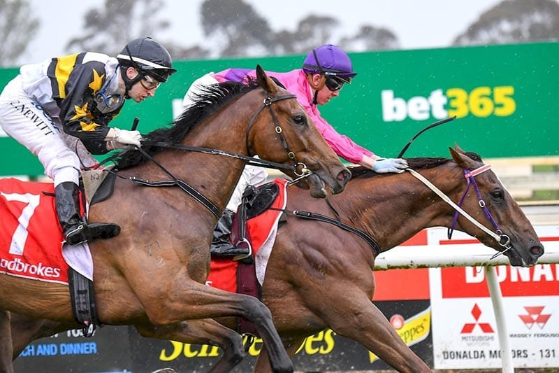 Ben Thompson wins Sale Cup on First Course