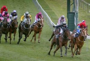 Hawke's Bay racing