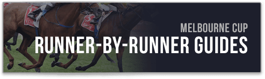 runner by runner guide melbourne cup